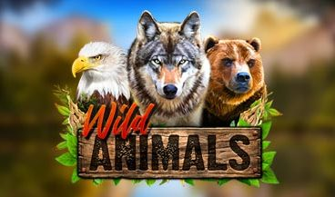 Wild Animals Review by Red Rake